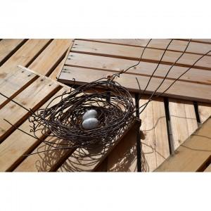 Nest #1000