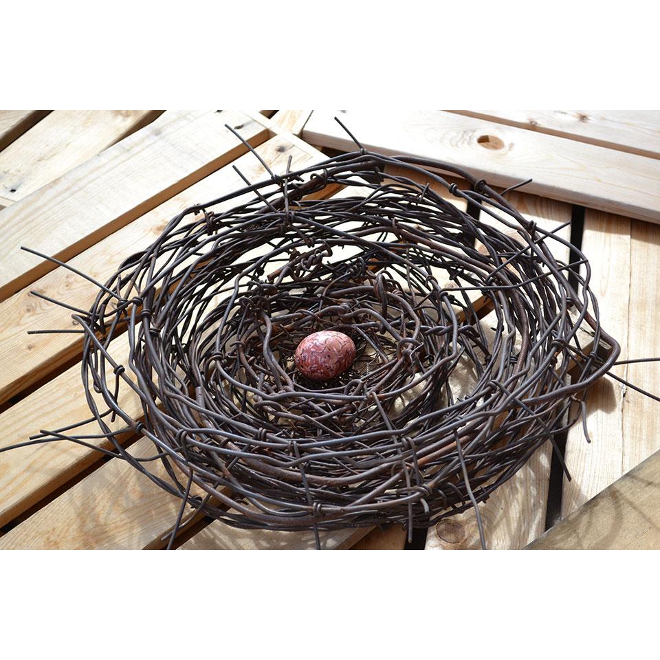 Nest #620 by Phil Lichtenhan