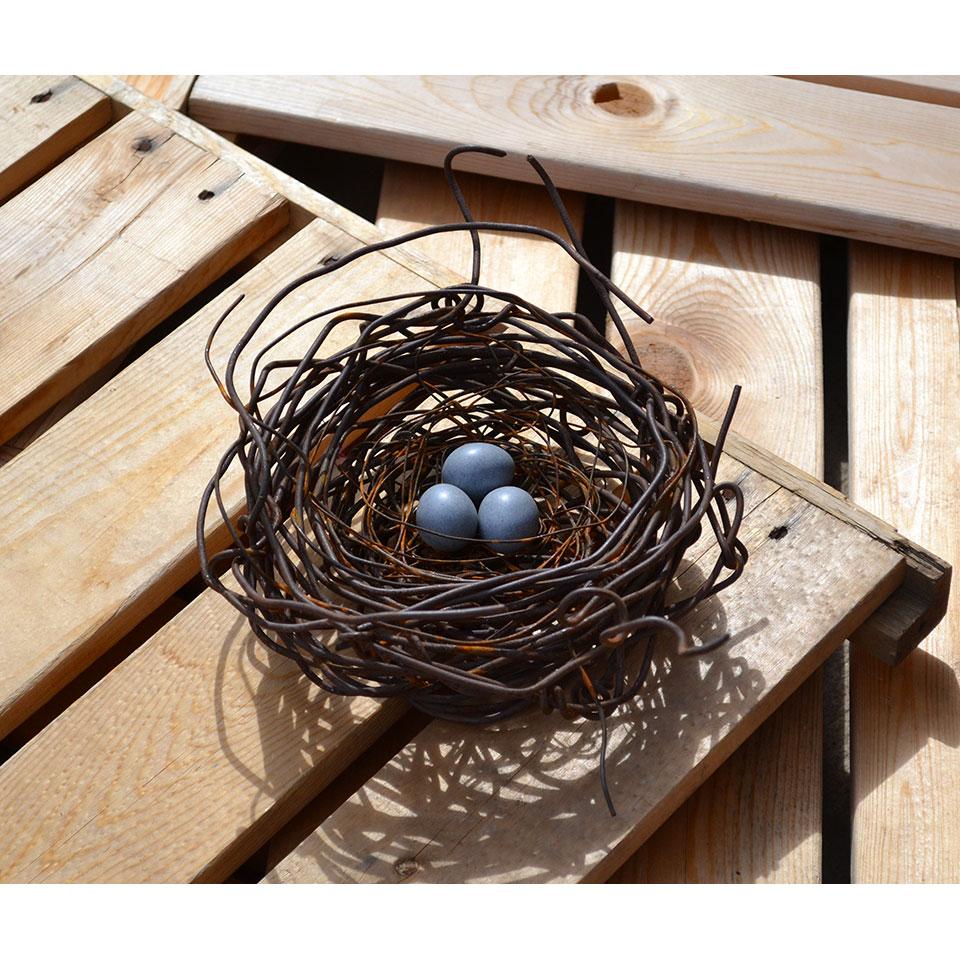 Nest #973 by Phil Lichtenhan
