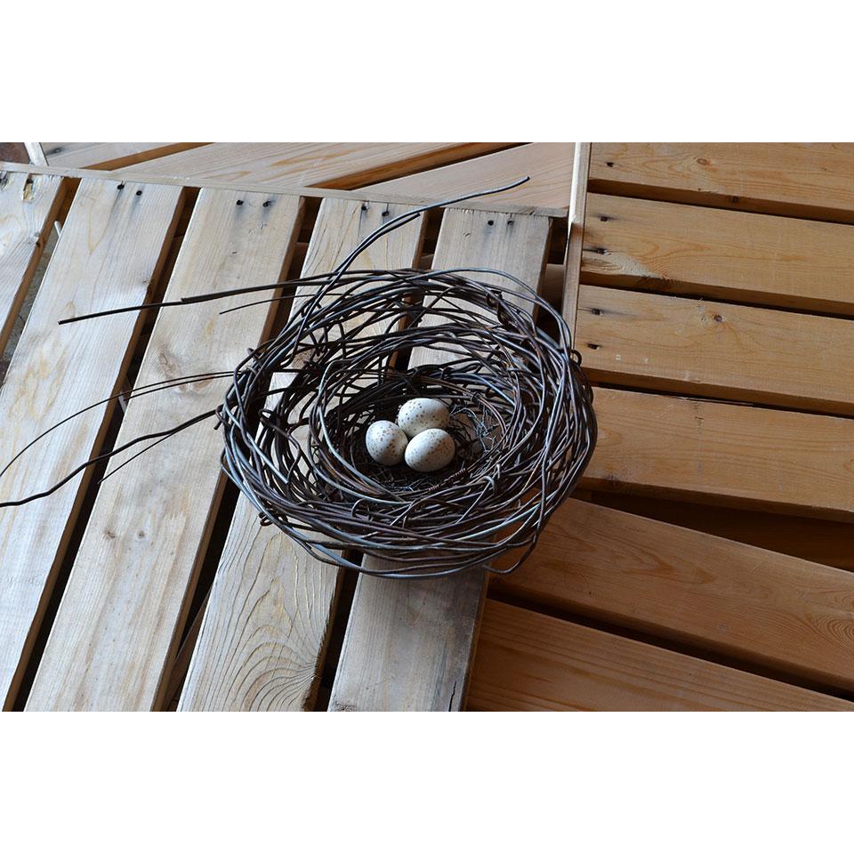 Nest #974 by Phil Lichtenhan