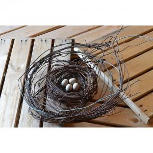 Nest #976