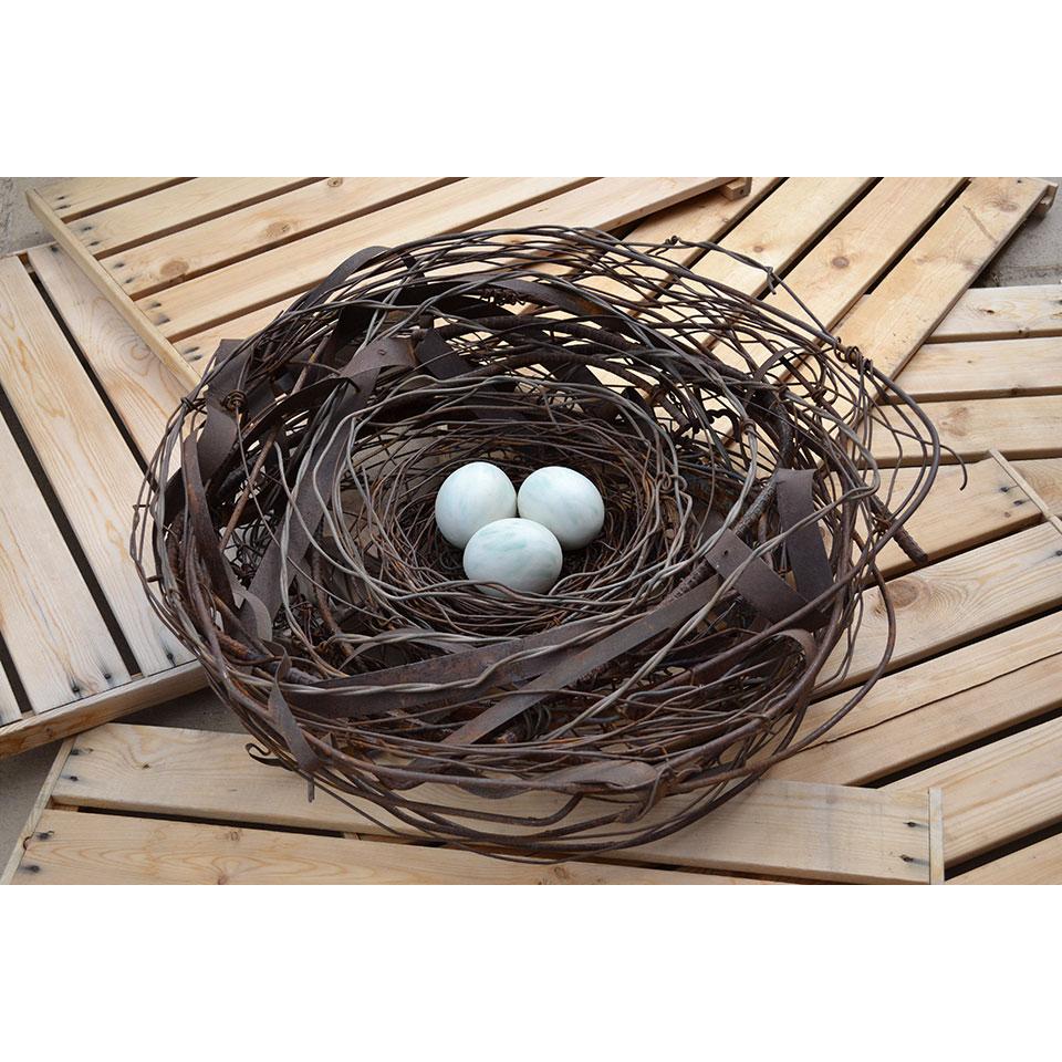 Nest #990 by Phil Lichtenhan