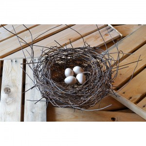 Nest #998