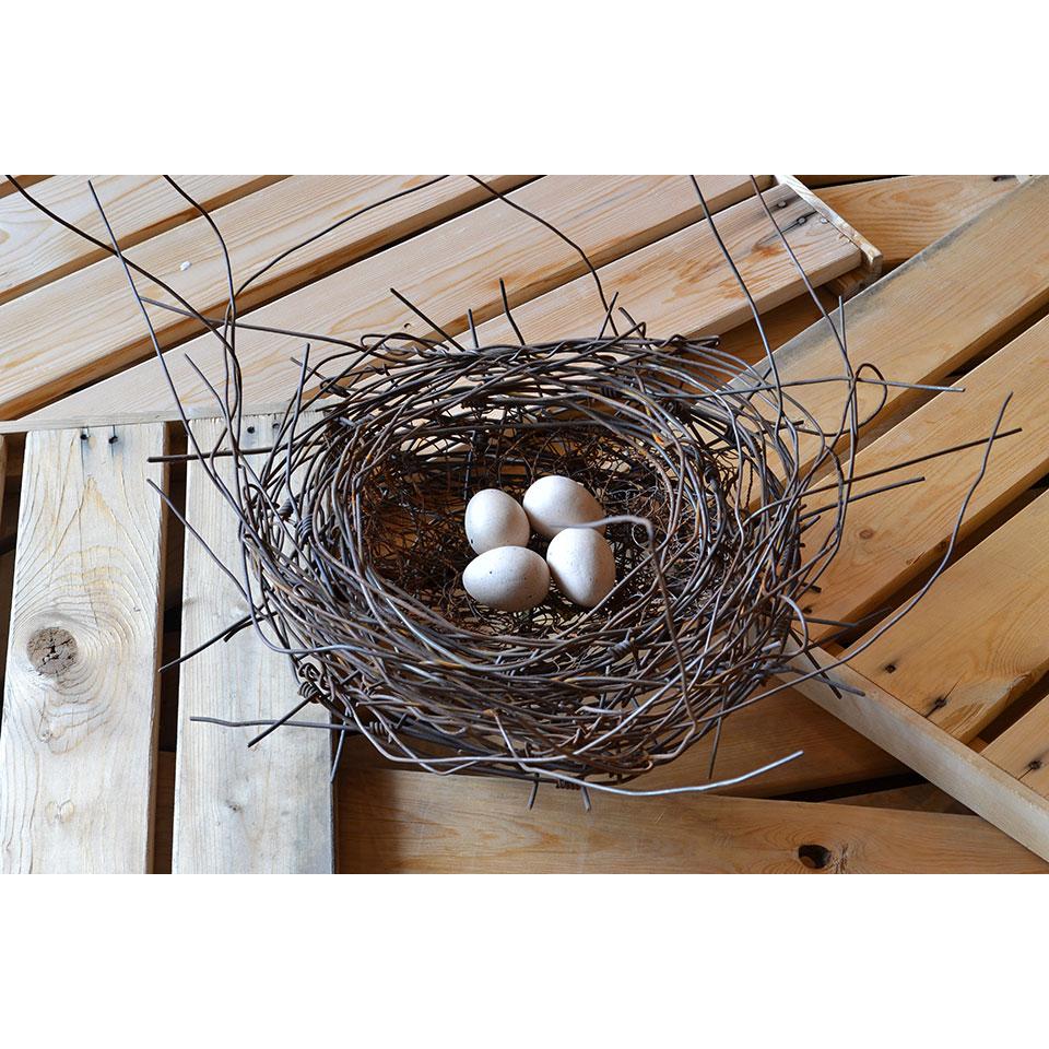 Nest #998 by Phil Lichtenhan