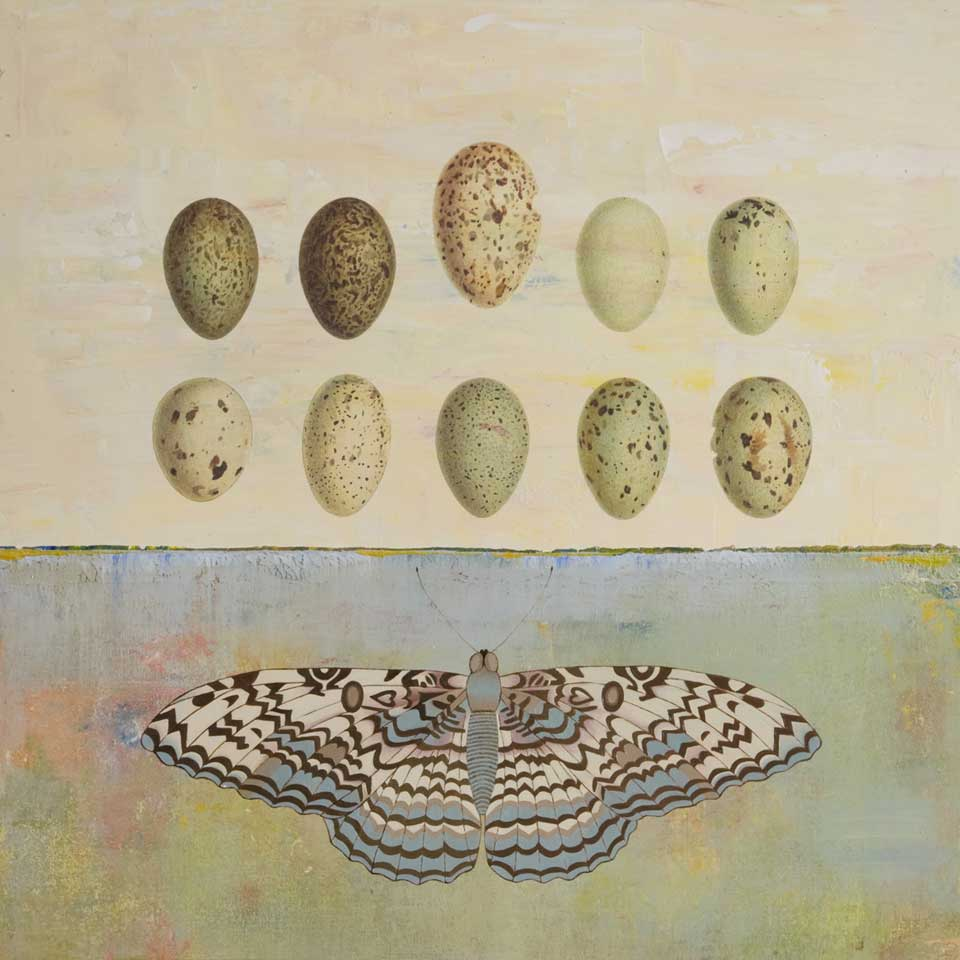 In The Beginning Was The Egg by Diana Stetson