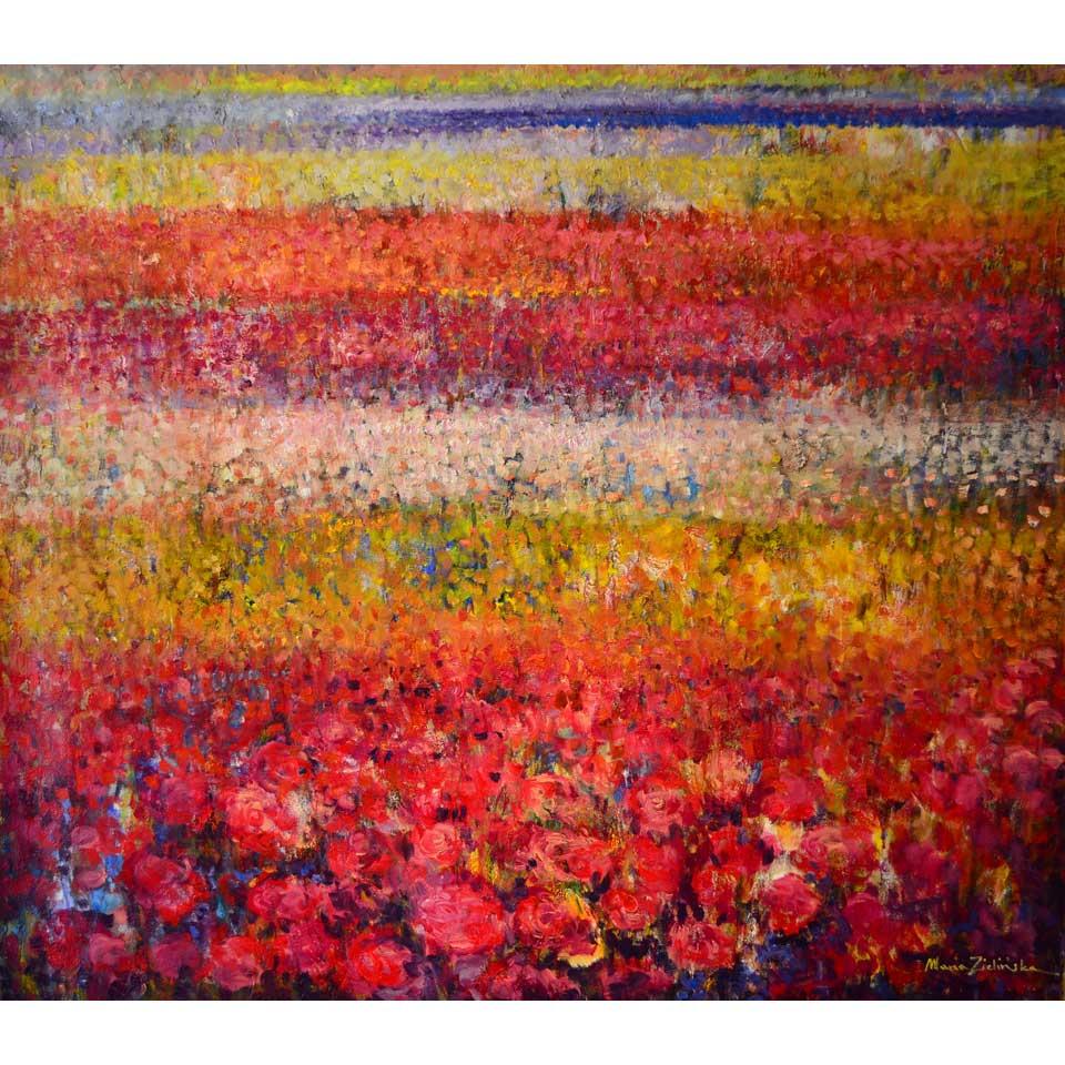 Ranunculus by Maria Zielinska