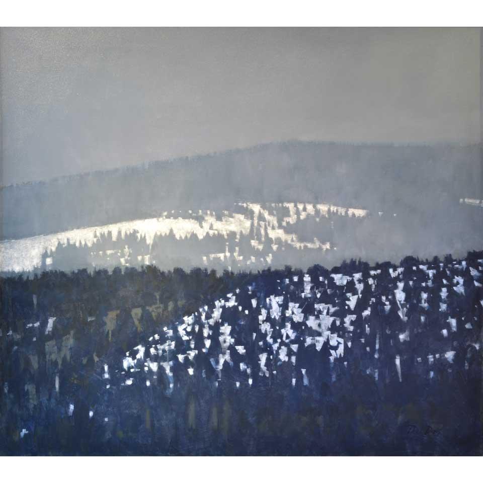 1,000 Lake Mountain Winter by Paul Davis