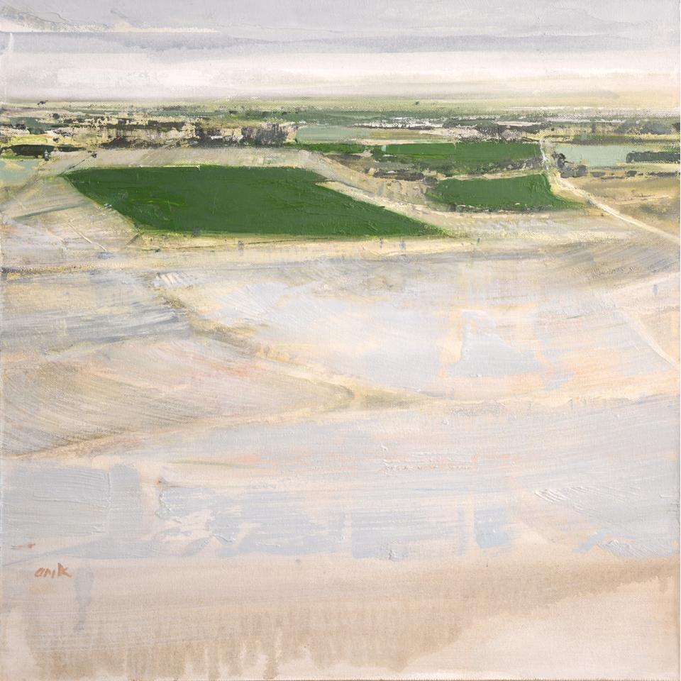 Cadillac Desert by Anne Kaferle