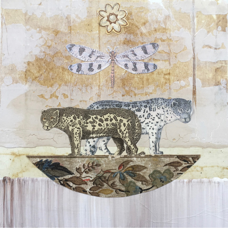 Snow Leopard Ark by Diana Stetson