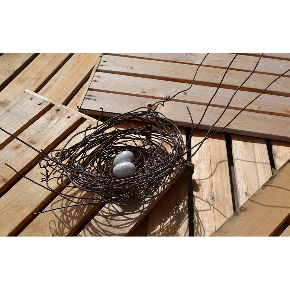 Nest #1000 by Phil Lichtenhan