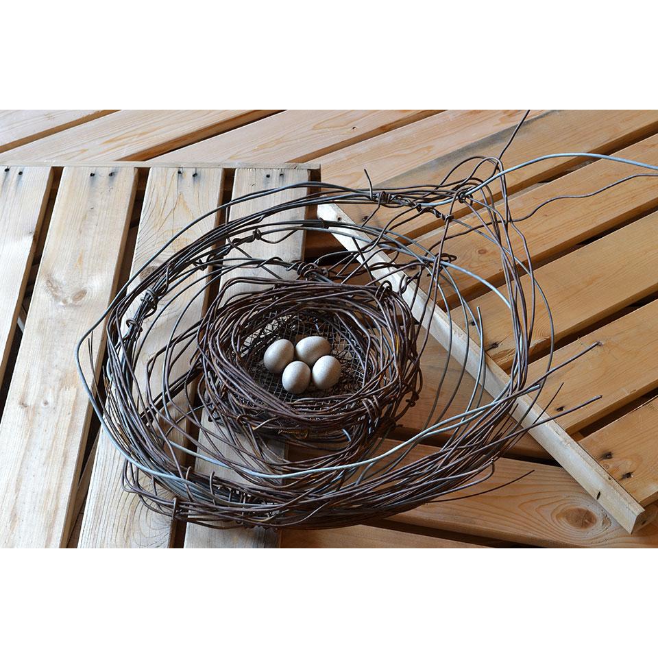 Nest #976 by Phil Lichtenhan