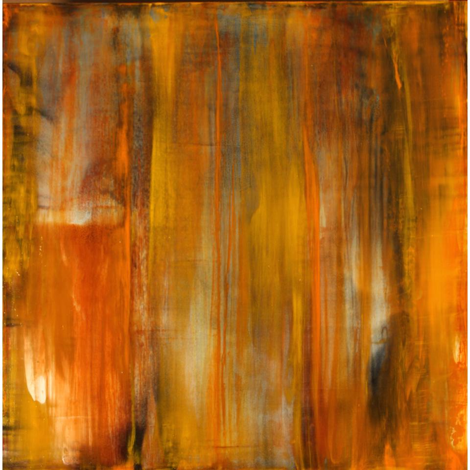 Desert Tapestry Orange by Tom Carlson
