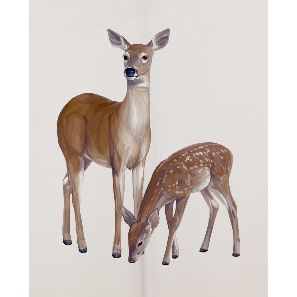 Doe With Fawn by Mai Wyn Schantz