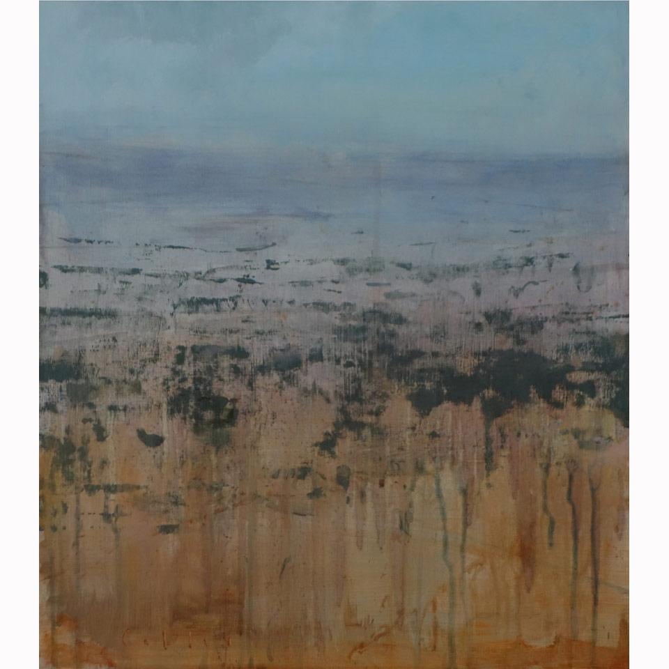 White Mesa by Charles Callis
