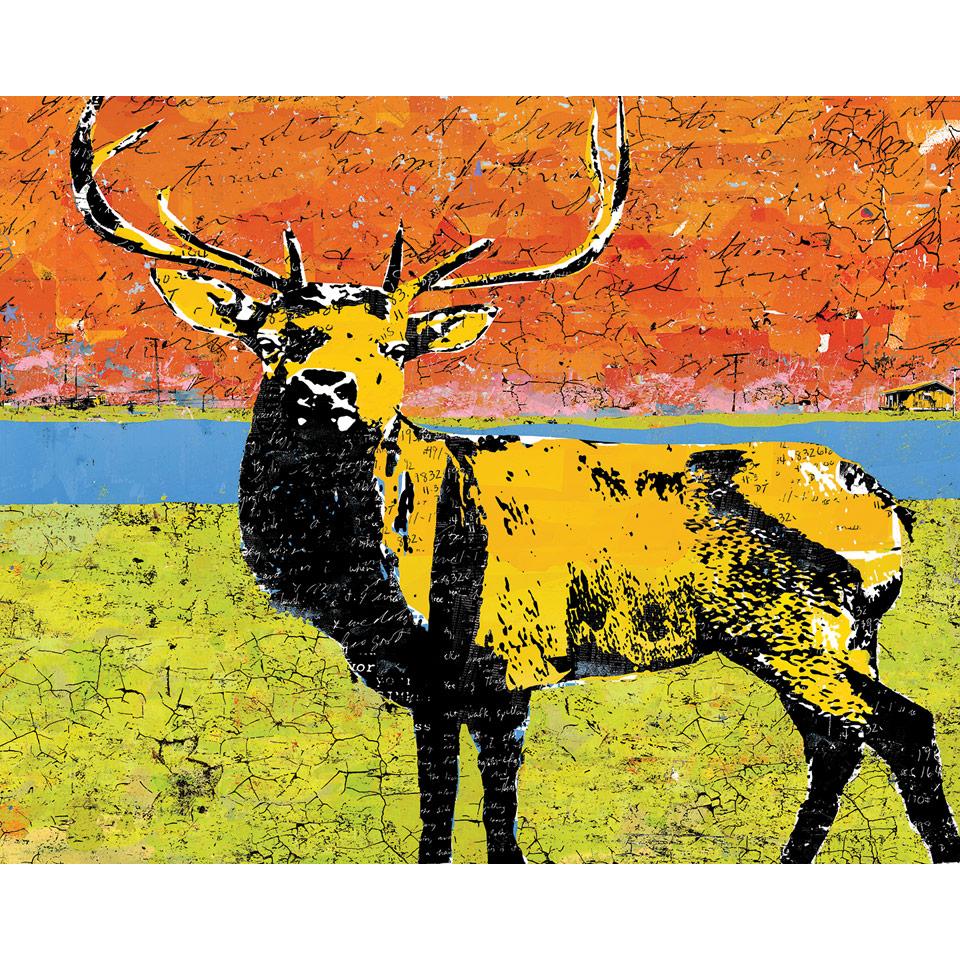 Elk by Daryl Thetford