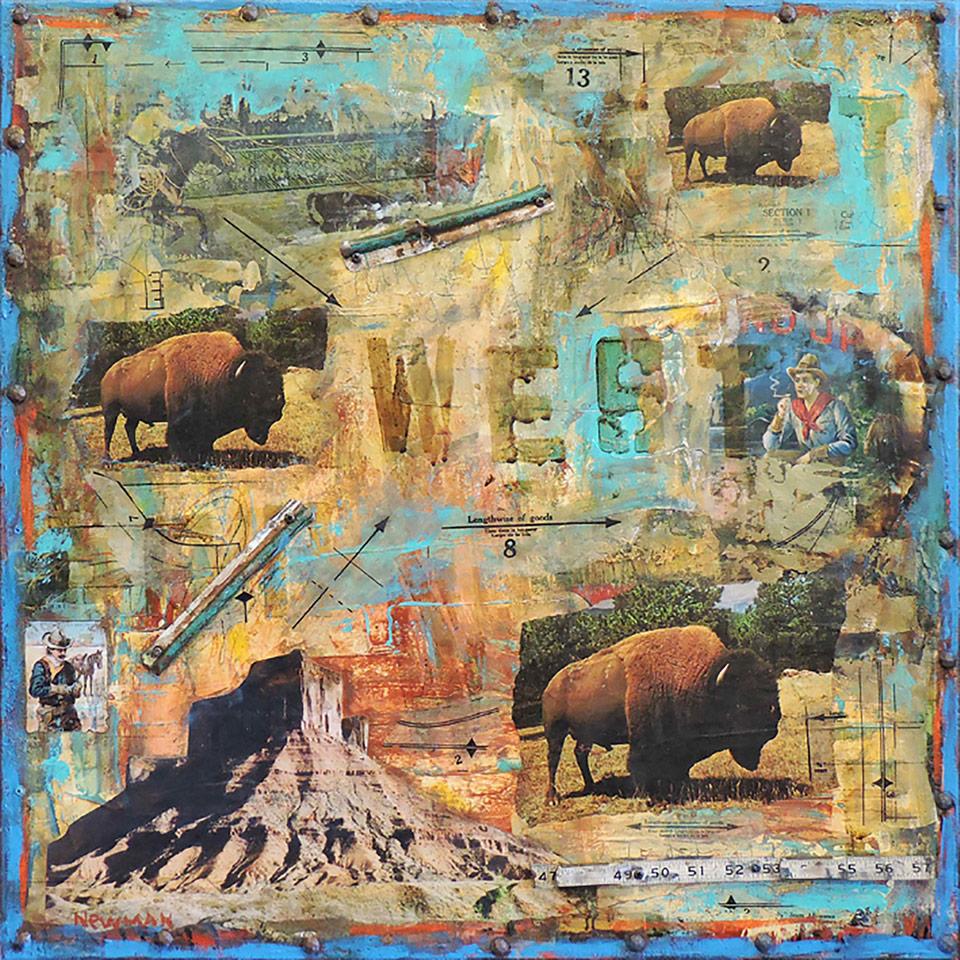 Mesa Buffalo by Dave Newman