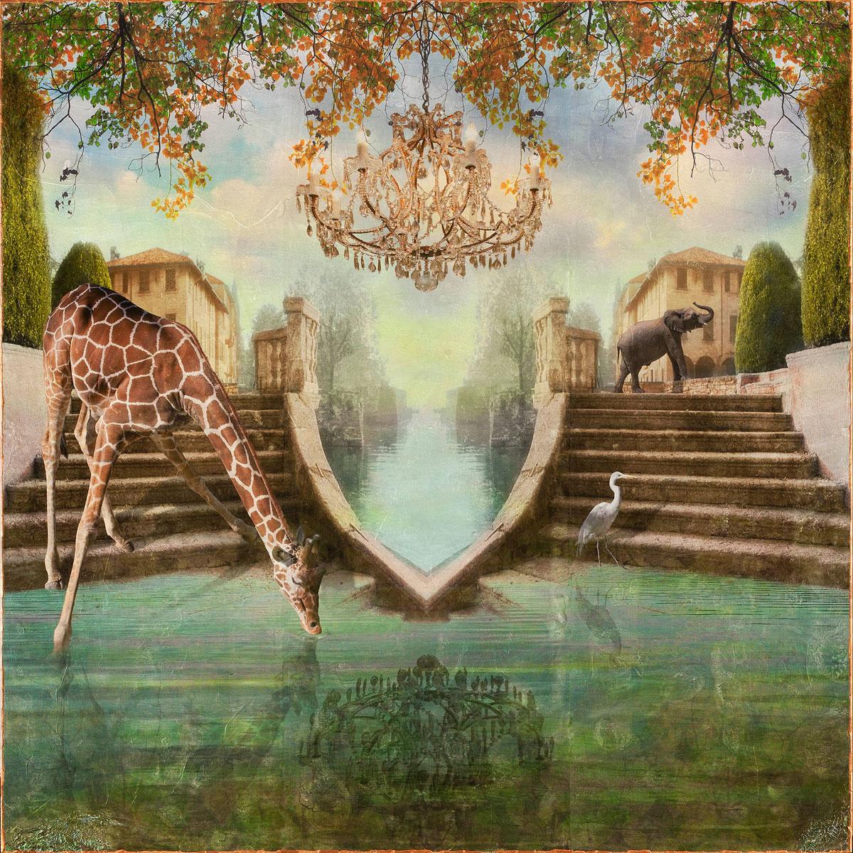 Mira III by Sondra Wampler