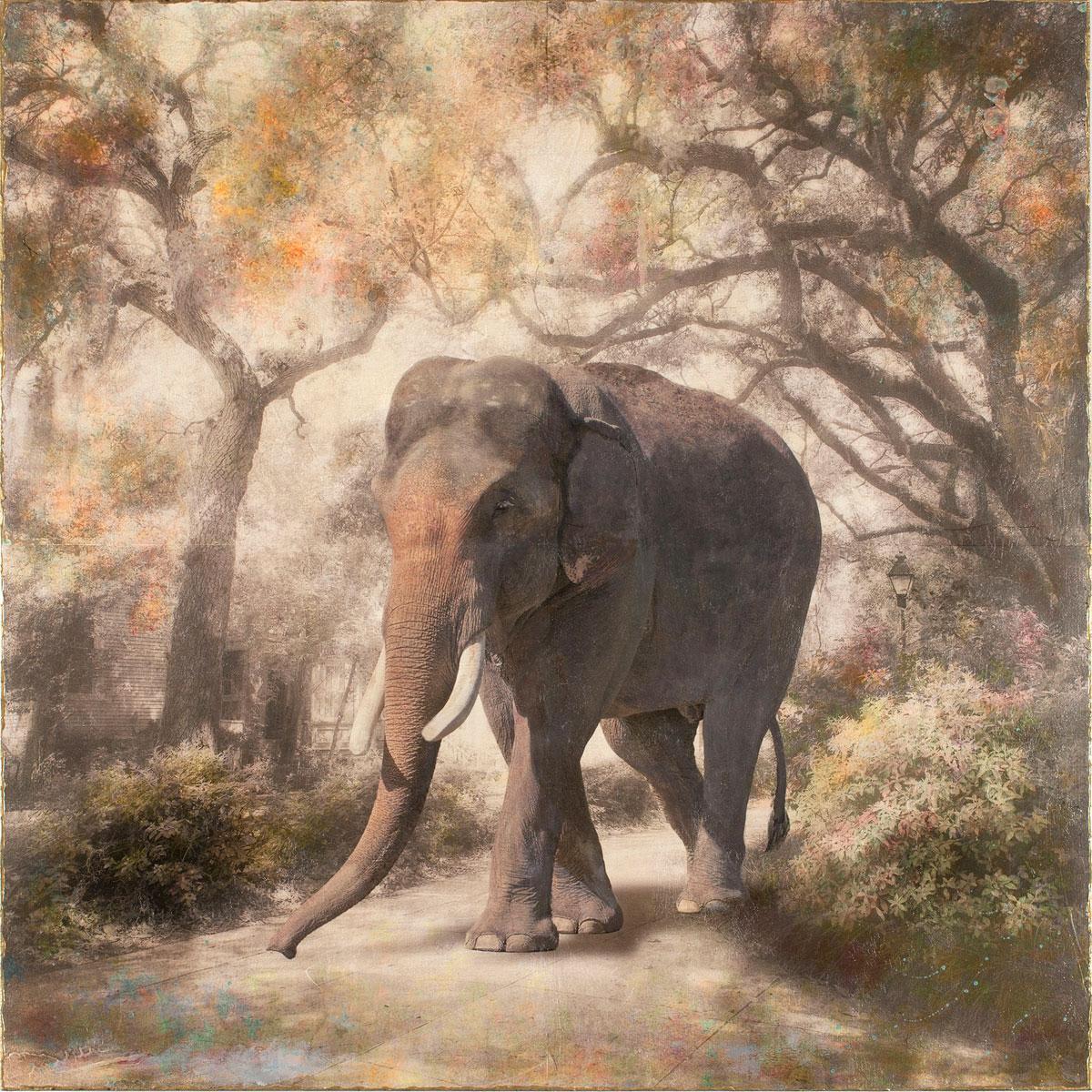 Savannah Stroll by Sondra Wampler