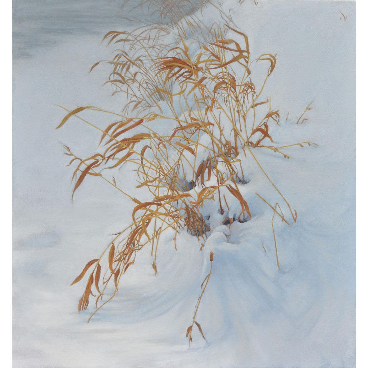 Winter Allegro by Stephanie Bush